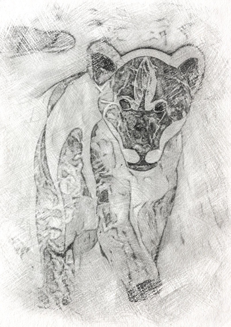 boceto-jardinera-con-leon-marmol